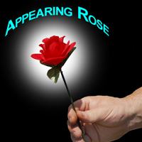 Appearing Rose - Instant