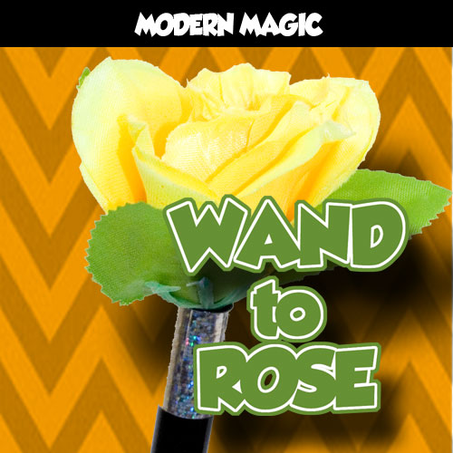 Wand to Rose - Modern