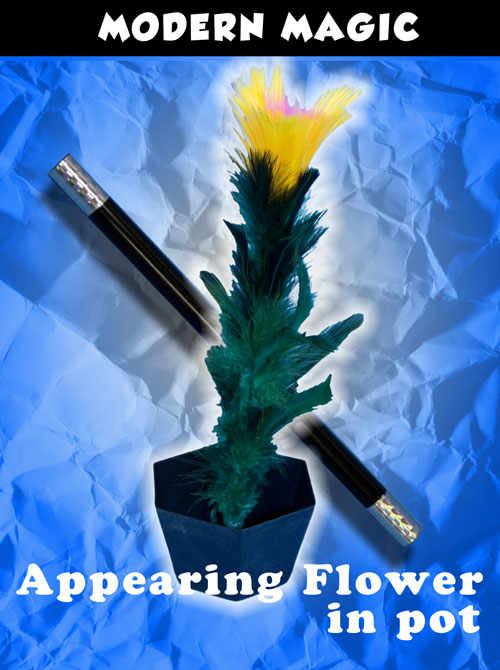 Appearing Flower in Pot - Modern