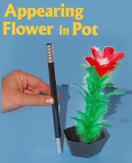 Appearing Flower in Pot w/ Wand