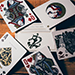 52 Plus Joker Playing Cards by Expert Playing Cards