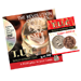 Tango Ultimate Coin (T.U.C)(D0110) Copper and Silver with instructional DVD by Tango - Tour